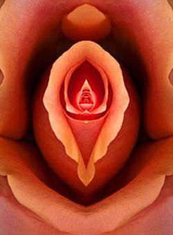 Menstruación: el desafío mensual de la mujer